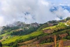 与山薄雾和雾路的观点 库存照片