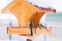 与山雀的鸟饲养者在冬天 库存照片