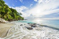 与岩石、棕榈树和绿松石wate的天堂热带海滩 库存照片