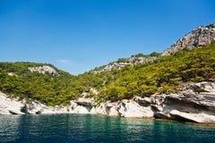与岩石和森林的海岸线 免版税库存照片