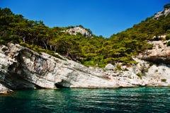 与岩石和森林的海岸线 免版税库存图片