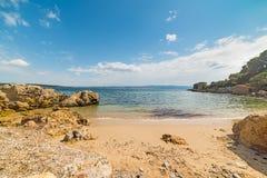 与岩石和植被的小海湾 免版税库存图片