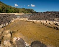 与岩石和螃蟹的Lumahai海滩考艾岛 图库摄影