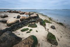 与岩石和青苔的岩石海岸 库存图片