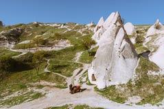 与岩石和骆驼的卡帕多细亚风景 免版税库存照片