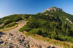 与岩石墙壁的山峰 库存照片
