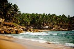 与岩石峭壁和棕榈树的海浪 库存照片