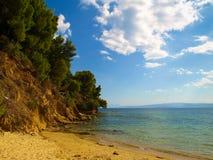 与岩石海岸线和杉树的美好的海景在Koukounaries附近的爱琴海在斯基亚索斯岛,希腊靠岸 免版税库存图片