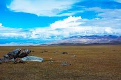与岩石片断的干草原风景  库存照片