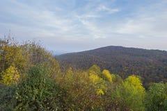 与岩石的山在秋天黄色和红颜色 秋天场面 库存图片