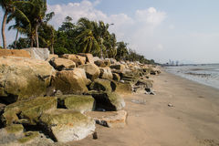 与岩石的布朗在海滩的沙子和椰子。 免版税库存图片