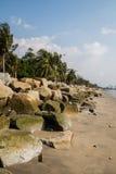 与岩石的布朗在海滩的沙子和椰子。 库存图片