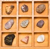 与岩石的收集的玻璃盖匣 免版税库存图片