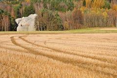 与岩石的秋天 免版税图库摄影