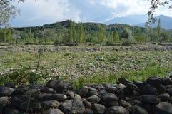 与岩石的绿色领域围拢与山 免版税库存照片