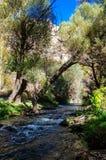 与岩石的Ihlara谷使中央安纳托利亚陷下 Capadocia,土耳其 图库摄影