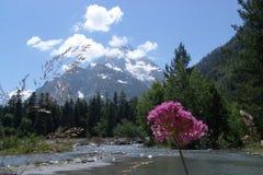 与峰顶和云彩的一个山风景 库存图片