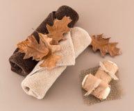 与工匠肥皂和豪华毛巾的秋天温泉 免版税库存照片