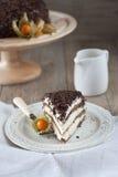 与巧克力削片的富有蛋糕 库存照片