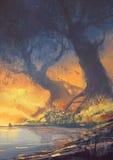 与巨大的根的大树在日落靠岸 库存图片