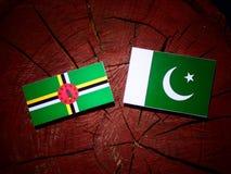 与巴基斯坦旗子的多米尼加旗子在被隔绝的树桩 向量例证