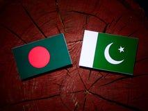 与巴基斯坦旗子的孟加拉国旗子在被隔绝的树桩 向量例证
