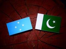 与巴基斯坦旗子的密克罗尼西亚旗子在被隔绝的树桩 皇族释放例证