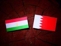与巴林旗子的塔吉克斯坦旗子在树桩 库存照片
