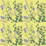 与常春藤和花的样式 库存例证