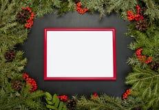 与常青杉树,锥体,霍莉莓果a的圣诞节框架 库存图片