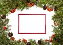 与常青杉树,锥体,霍莉莓果a的圣诞节框架 库存照片