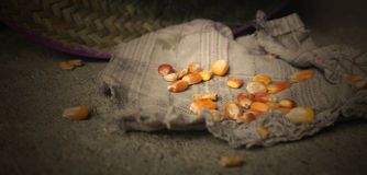 与帽子和老旧布的玉米玉米在地板 库存照片