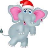 与帽子圣诞节的滑稽的大象动画片 免版税图库摄影