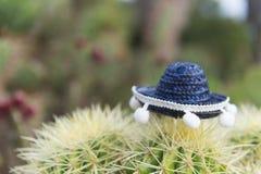与帽子的西班牙仙人掌 库存照片