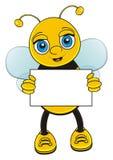 与干净的板材的蜂 免版税库存图片
