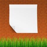 与干净的横幅和草的红砖callboard 库存例证