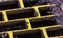 与干叶子和枝杈的黄色生锈的铁风暴流失 库存图片
