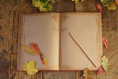 与干叶子和笔记本的秋天模板 免版税库存图片