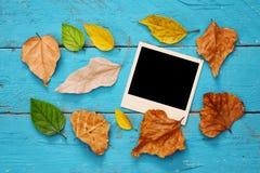 与干燥叶子和空白的照片框架的秋天背景 免版税库存图片