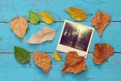 与干燥叶子和老照片框架的秋天背景 免版税图库摄影