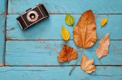 与干燥叶子和老照相机的秋天背景 库存照片