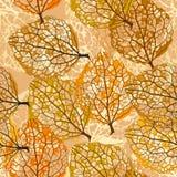 与干燥叶子的无缝的样式 免版税图库摄影