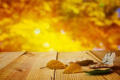与干燥叶子的秋天背景在木桌上 免版税库存图片