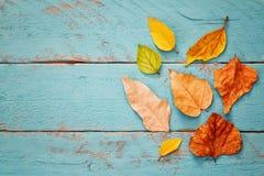 与干燥叶子的秋天背景在木桌上 库存照片