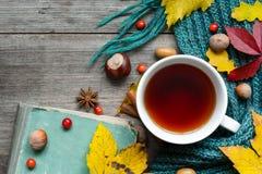 与干燥叶子的秋天背景,围巾、茶用香料和葡萄酒预定 库存照片