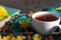 与干燥叶子的秋天背景,围巾、茶用香料和葡萄酒预定 库存图片
