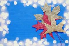 与干燥叶子的秋天背景 闪烁覆盖物 免版税库存图片