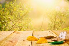 与干燥叶子的空的桌在模糊的秋天背景前面 为产品显示蒙太奇准备 免版税库存图片