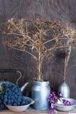 与干燥大草原多刺的花和葡萄的静物画 免版税库存图片