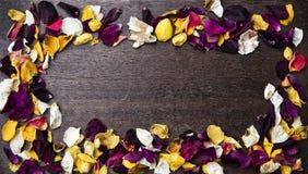 与干燥玫瑰花瓣的框架在木背景 免版税库存图片